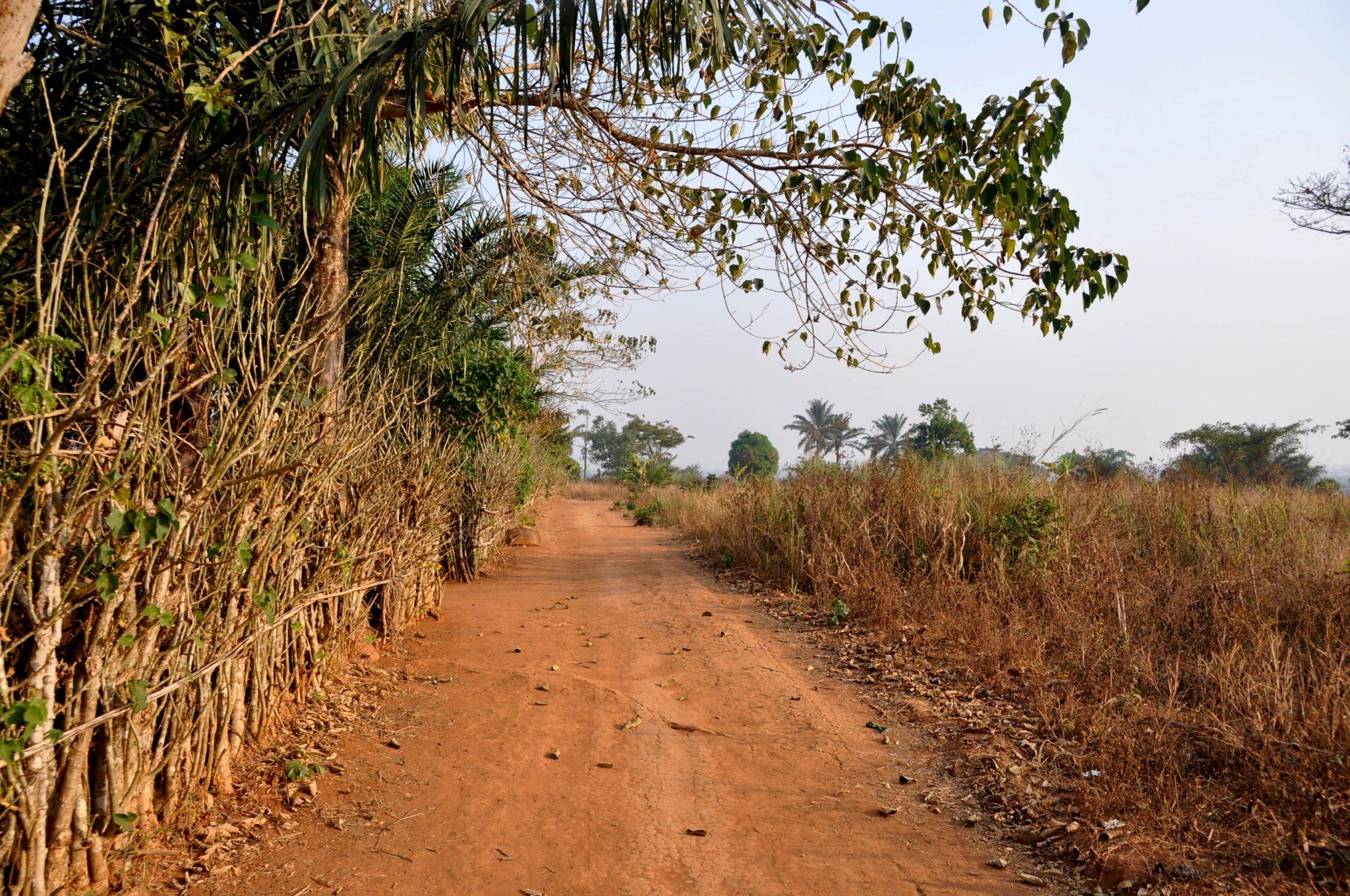 road in bafanji