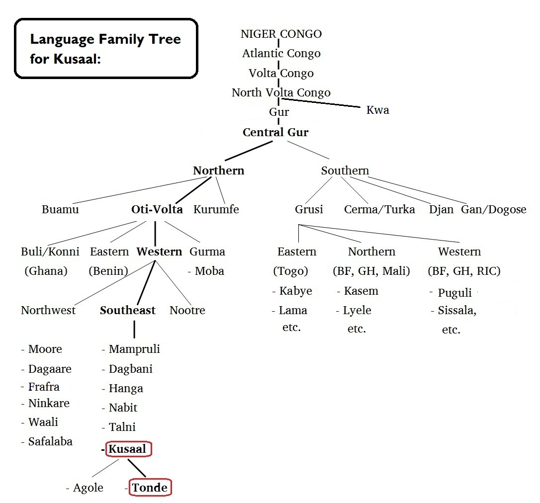 Language family tree for Kusaal b