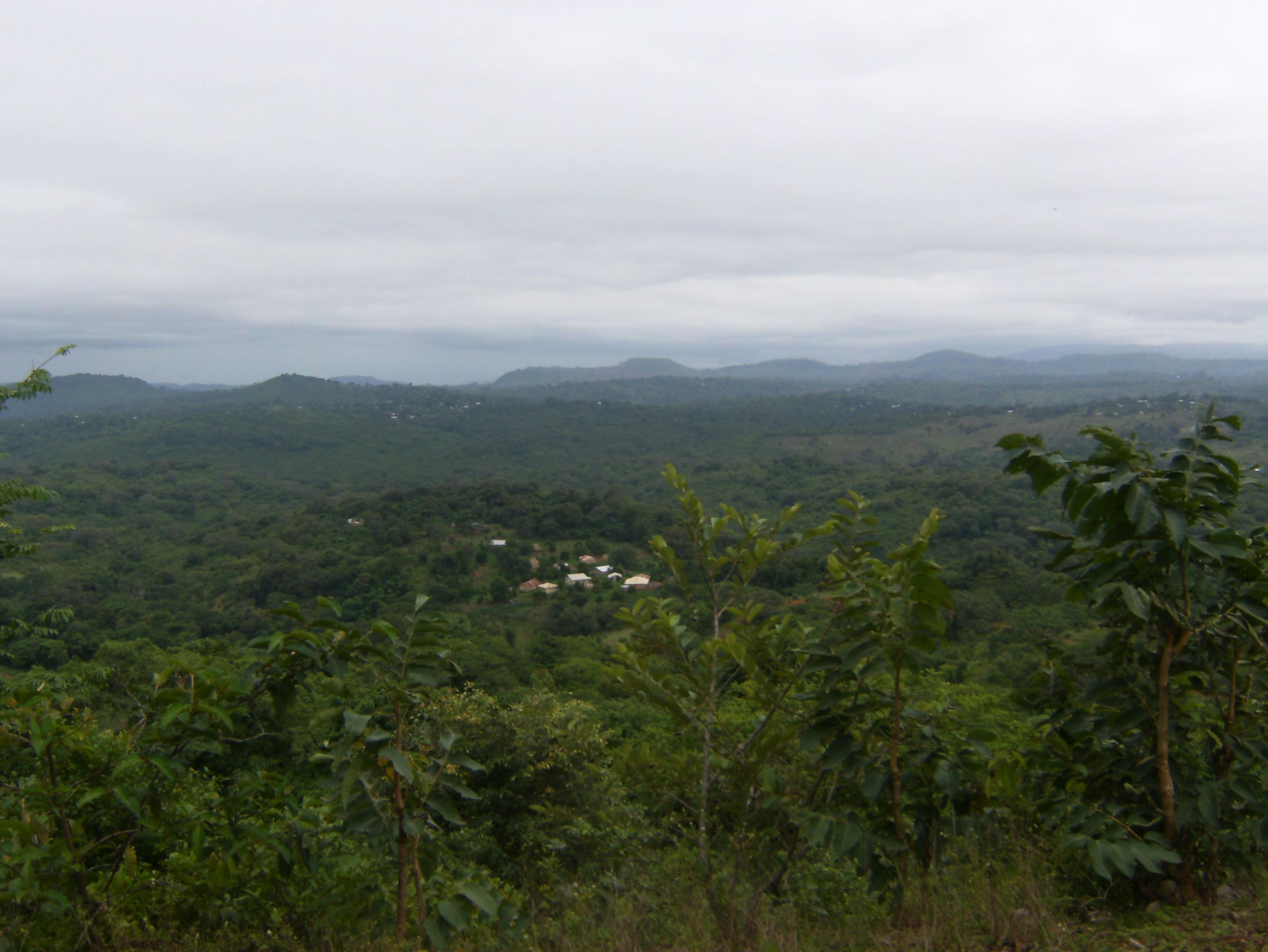 Paysage du Fouta, région de Pita