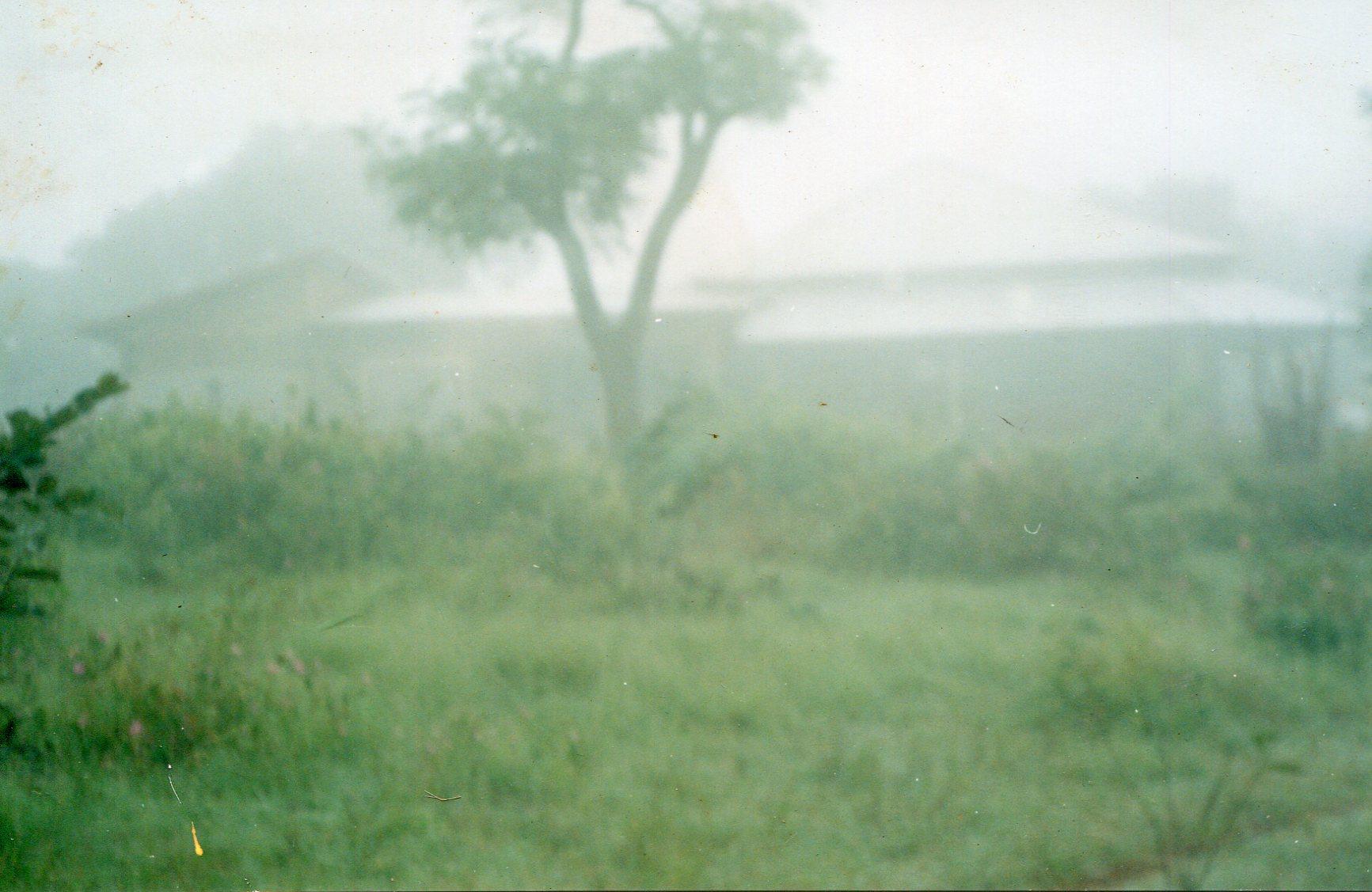 Matin brumeux à Gongore, Pita